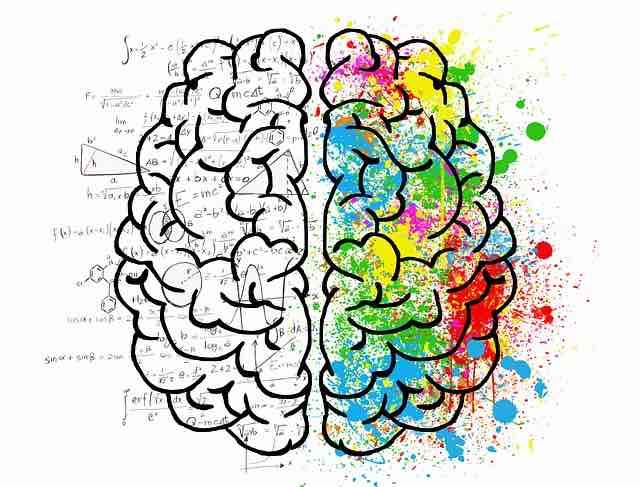 So erholt sich das Gehirn, wenn man nicht mehr trinkt