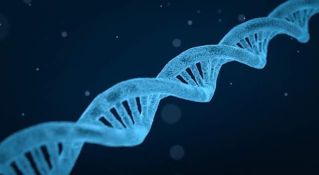 19 neue genetische Risikofaktoren für Alkoholismus gefunden